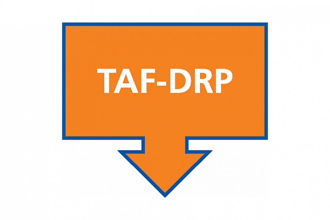 Launch of the Second Call for Project Ideas – TAF-DRP